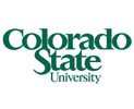 bachelor of business administration colorado state